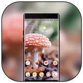 Theme for plant mushroom bright wallpaper icon