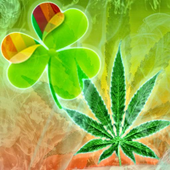 GO Launcher Ganja Weed Theme icon