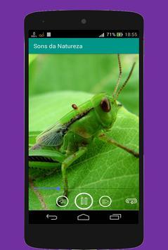 Sons da Natureza poster