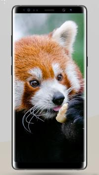 Animal Wallpapers & Backgrounds 2018 apk screenshot