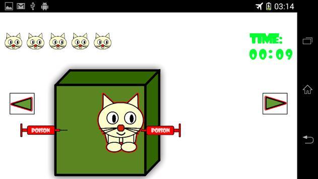 Schrödinger's Kitty screenshot 1