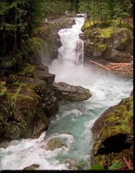 Mount Rainier wallpaper apk screenshot