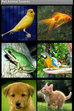 Pet Animal Sounds Free poster