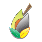 Tcertifica icon