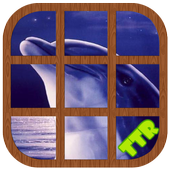 Dolphin Sliding Puzzle icon
