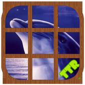 Dolphin Sliding Puzzle icon