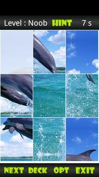 Dolphin Sliding Puzzle screenshot 1