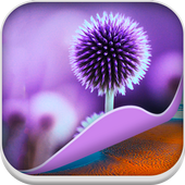 Nature HD Wallpapers - Live icon