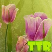 tulpen lwp-icoon