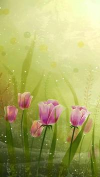 tulips live wallpaper poster