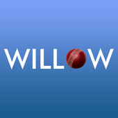 Willow icon