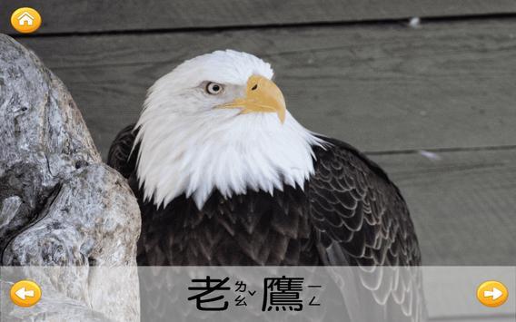 認識鳥類 screenshot 1