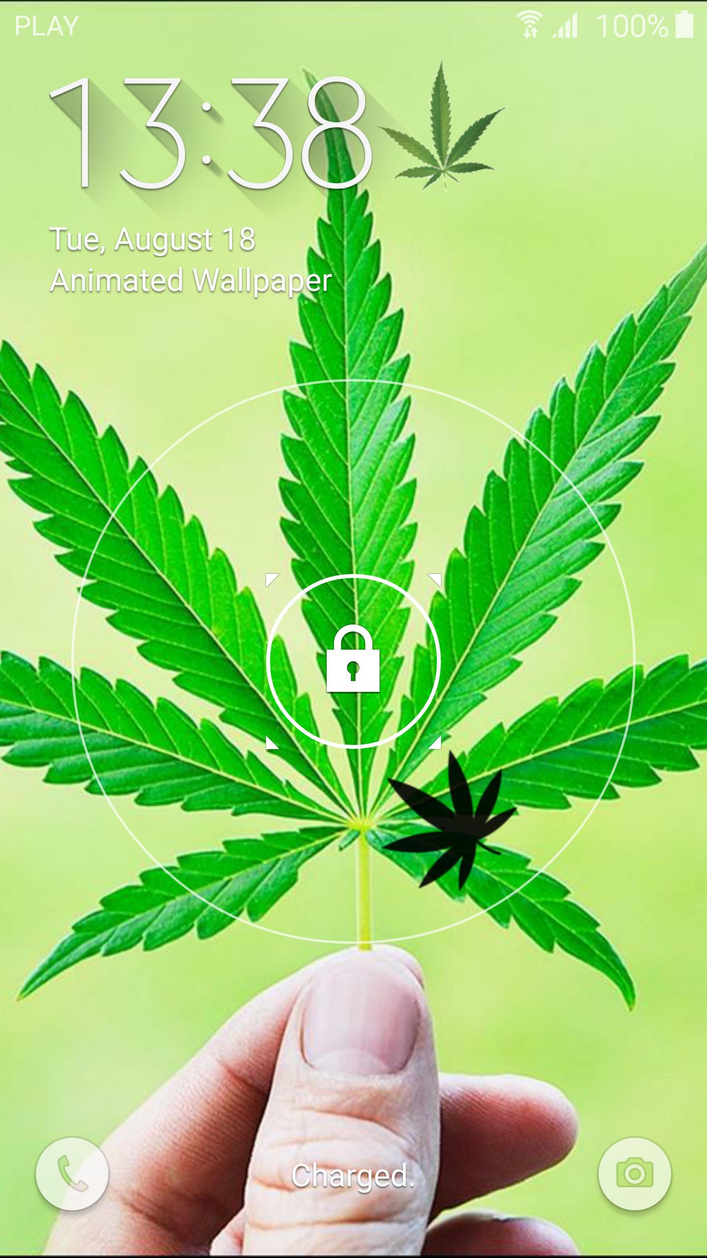 3D Marijuana Live Wallpaper For Android APK Download