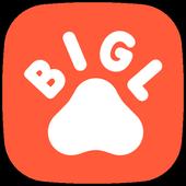 Bigl.ua icon