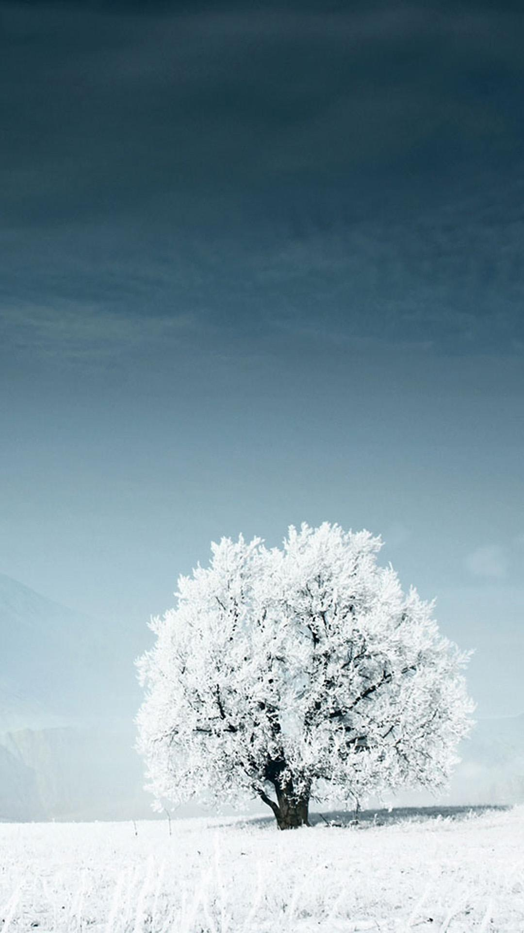 Winter Wallpapers Hd For Android Apk Download