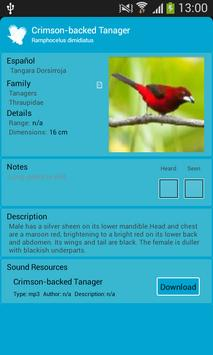 Birds of Panama's Cities apk screenshot