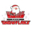 Radio Snowflake icon