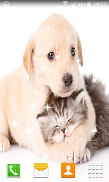 Cat and Dog Live Wallpapers apk screenshot