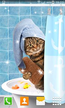 Funny Cat Live Wallpapers poster