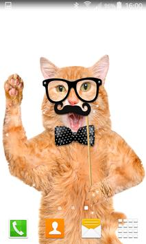 Hipster Cat Live Wallpapers screenshot 1