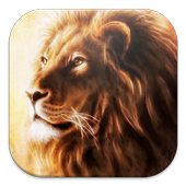 Lion Live Wallpapers icon