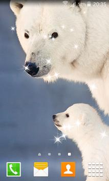 Polar Bear Live Wallpapers apk screenshot