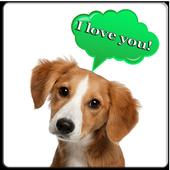 Dog translator icon