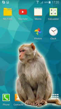 Monkey in phone apk screenshot