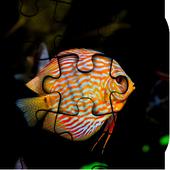 Fish Jigsaw Puzzle HD Ultra icon