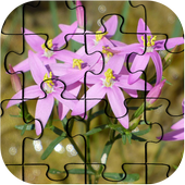 Flowers Jigsaw Puzzle HD Ultra icon
