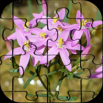 Flowers Jigsaw Puzzle HD Ultra poster