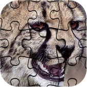 Top Jigsaw Puzzle 1000 Pieces icon