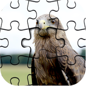 Master Collections of Jigsaw Puzzle Game Pro icon