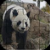 Best Panda Jigsaw Puzzle NEW icon