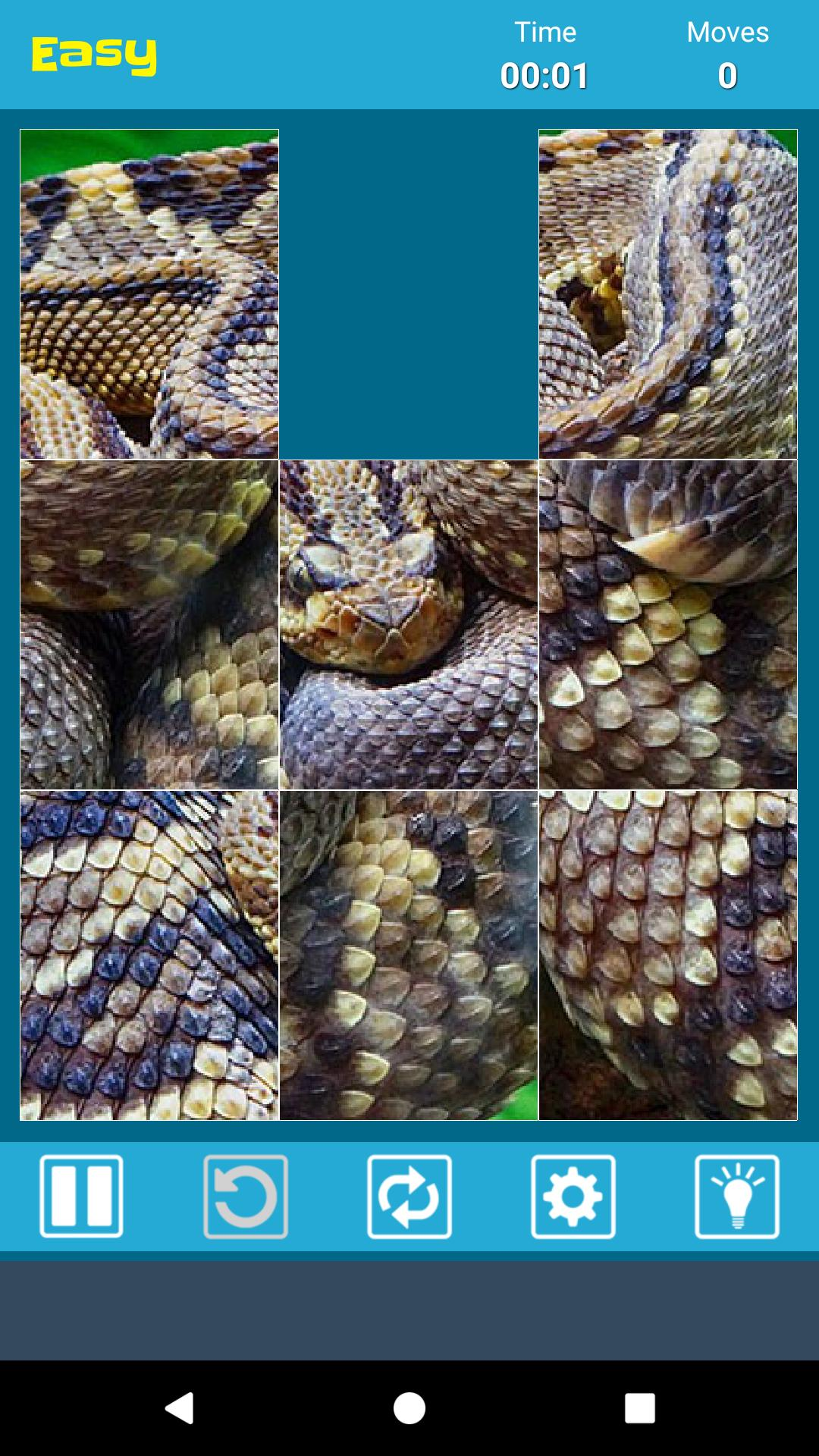 HD Snake Pic Jigsaw Puzzle Game Best for Android - APK Download