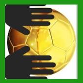 Soccer Goalkeeper Brazil 2014 icon