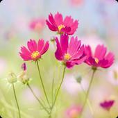 Fresh flower wallpaper icon