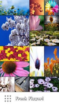 Fresh flower wallpaper poster