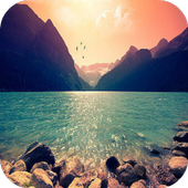 Inspiration Images icon