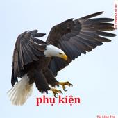 Chim Ưng icon