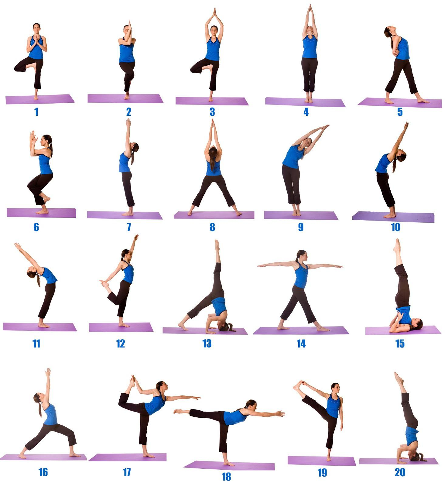 Yoga Exercises For Beginners For Android Apk Download