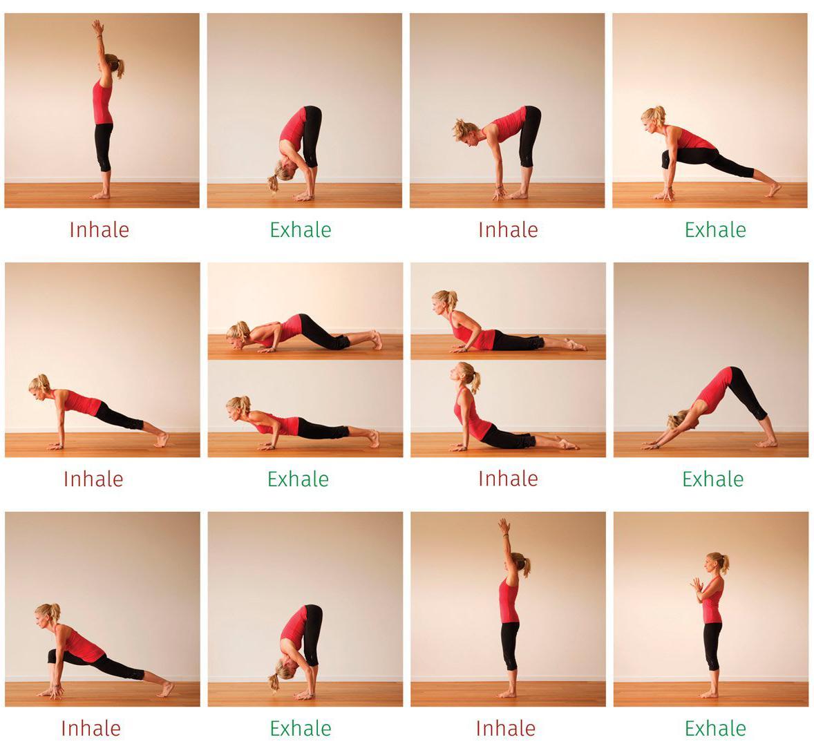 Yoga Exercises Beginners