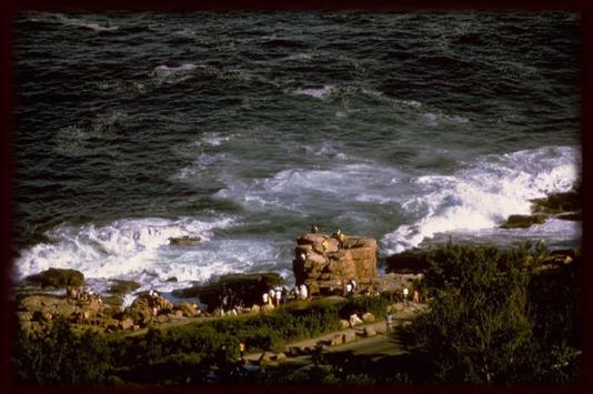 Acadia Natl Park Wallpapers apk screenshot
