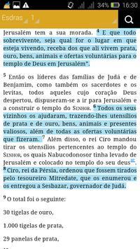 Biblia Sagrada -NVI screenshot 3