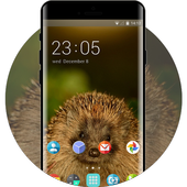 Theme for Videocon V1546 Hedgehog Wallpaper icon
