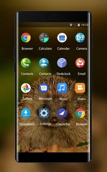 Theme for Videocon V1546 Hedgehog Wallpaper apk screenshot