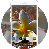 Theme for Videocon V1311 Flower Wallpaper icon