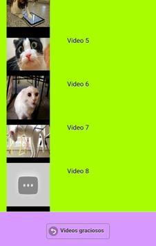 Videos graciosos apk screenshot