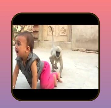 Funny videos. screenshot 1