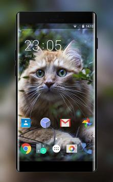Theme for Xolo X910 Cat Wallpaper poster